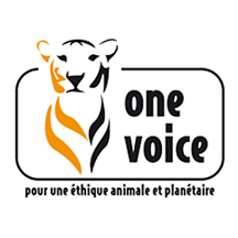 One Voice France